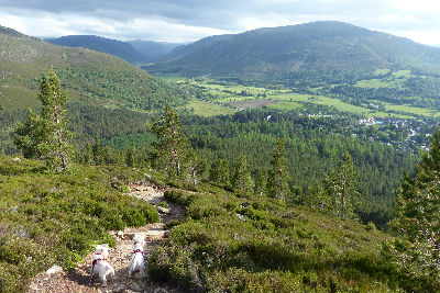 Braemar, Royal Deeside & the Cairngorms